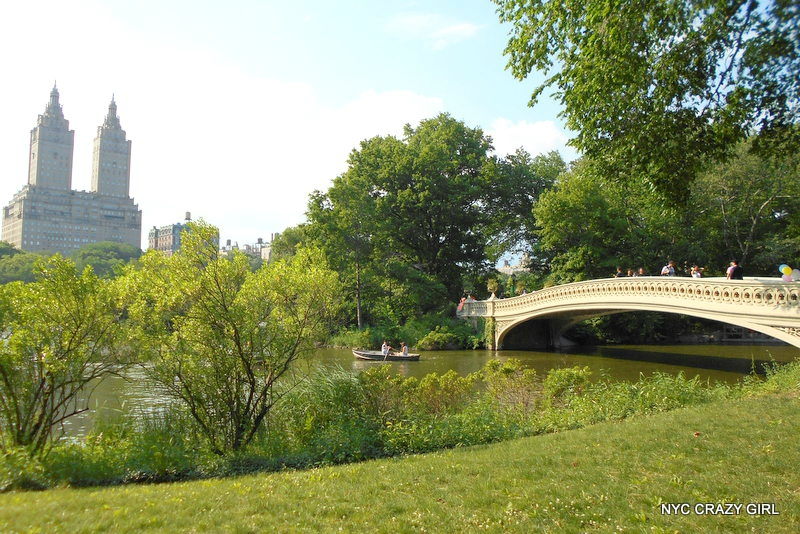 central-park-bow-bridge-new-york