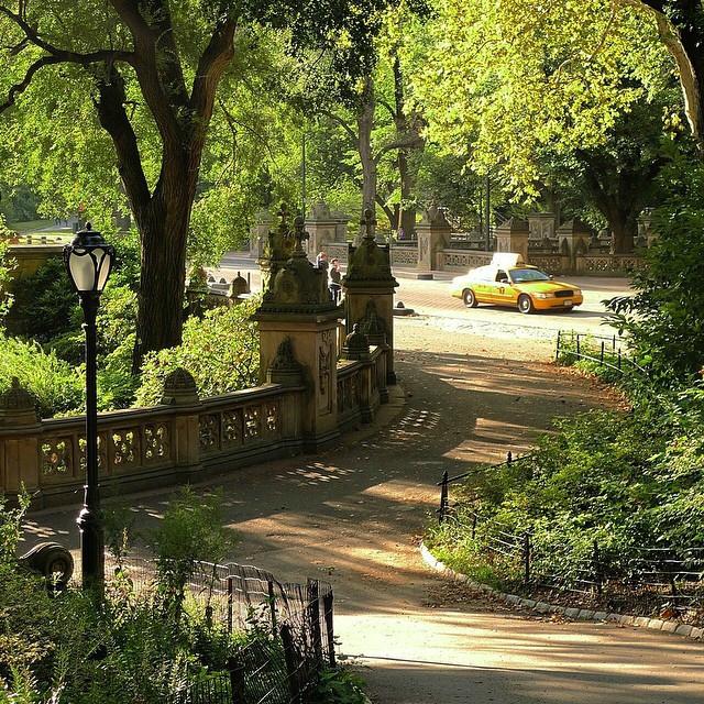 central-park-new-york-2