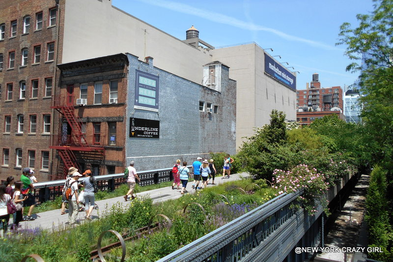 high-line-chelsea-manhattan-new-york-18