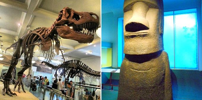 museum-of-natural-history-new-york-manhattan-ben-stiller-7