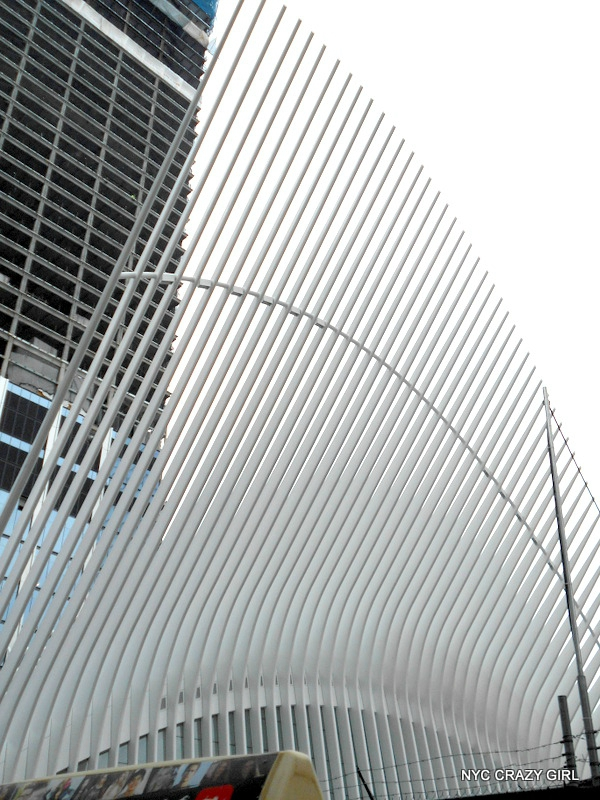 oculus-gare