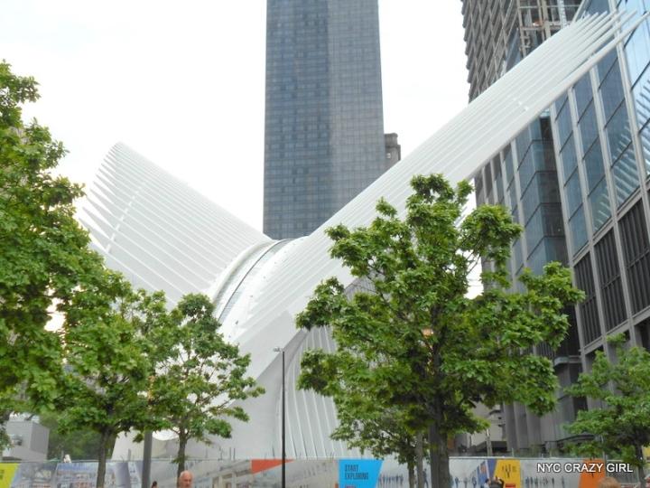 oculus-new-york