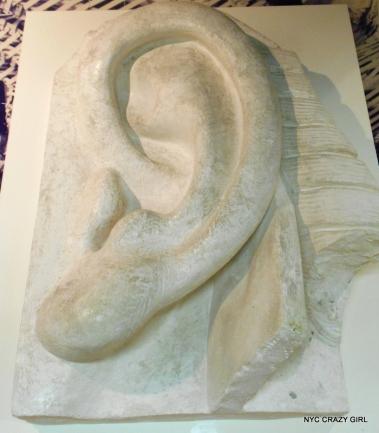 oreille-statue-de-la-liberte