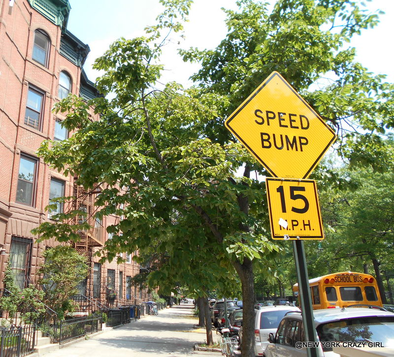park-slope-brooklyn-new-york-10