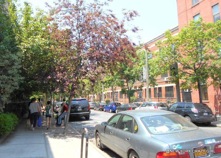 park-slope-brooklyn-new-york-4