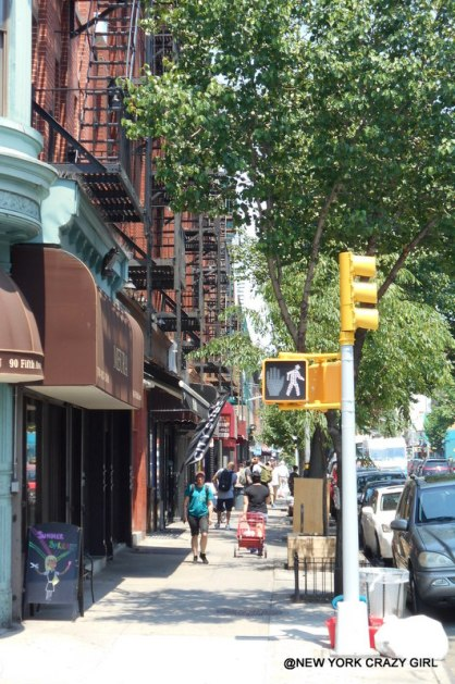 park-slope-brooklyn-new-york-5