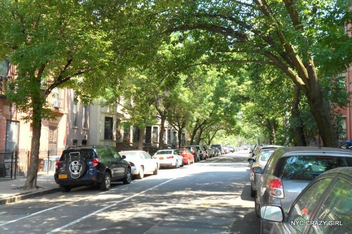 park-slope-brooklyn-new-york-new-york-crazy-girl-2