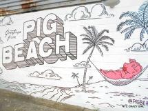 pig-beach-gowanus-bbq-new-york-food