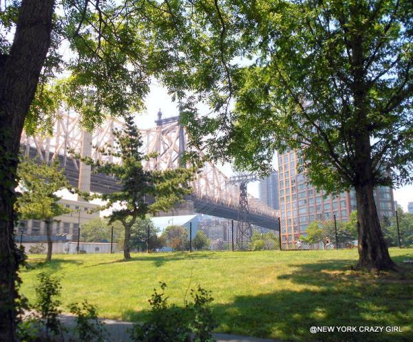roosevelt-island-tramway-telepherique-new-york-queensboro-bridge-new-york-7