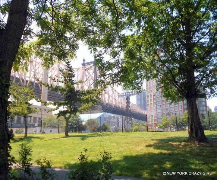 roosevelt-island-tramway-telepherique-new-york-queensboro-bridge-new-york-7