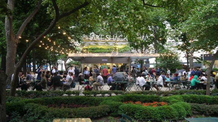 shake shack madison square park new york