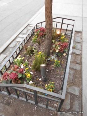 bac-a-fleur-new-york