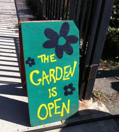 jardin-communautaire-new-york-brooklyn-3