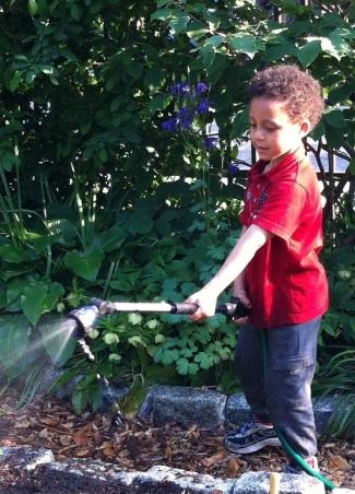 jardin-communautaire-new-york-brooklyn-4