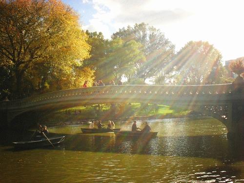 new-york-en-automne-central-park