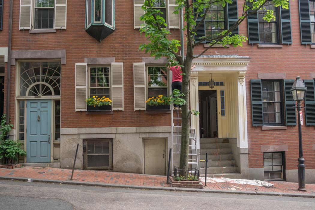 visiter-beacon-hill-boston