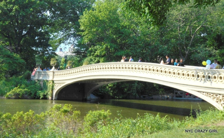 bow bridge central park new york