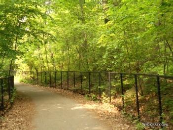 prospect park brooklyn new york (1)