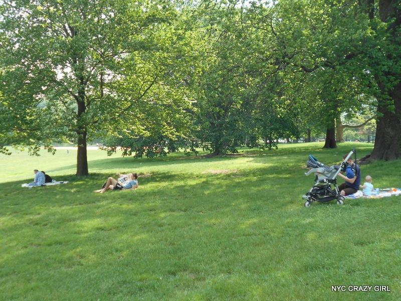 prospect park.jpg