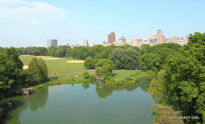 vue de puis le belvedere castle central park new york