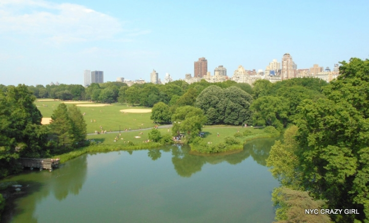 vue de puis le belvedere castle central park new york