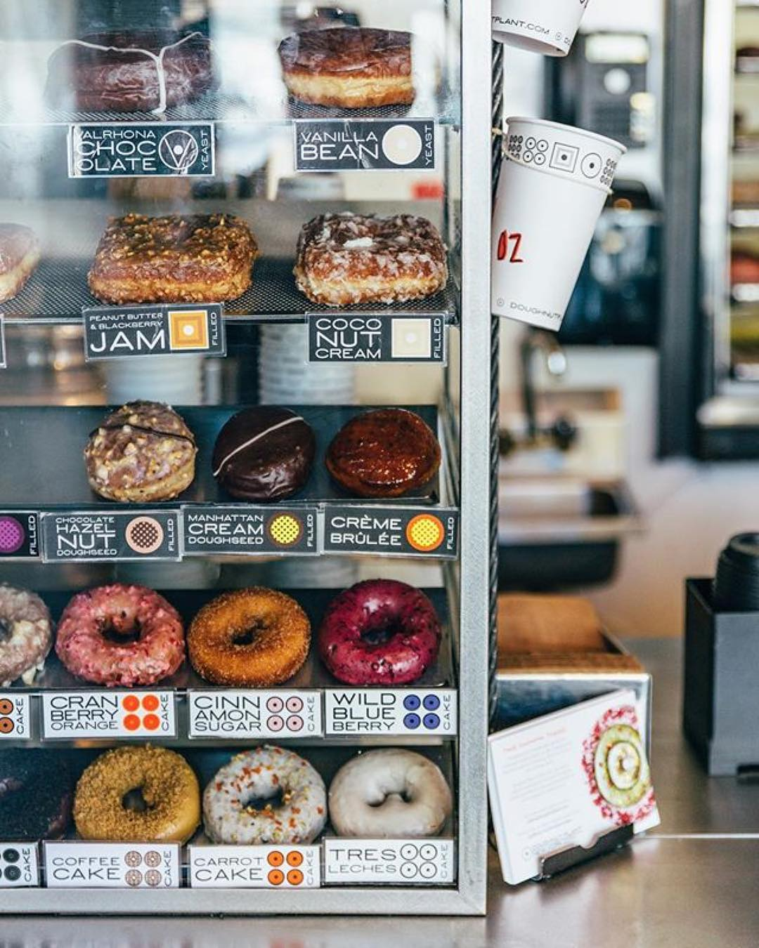 doughnut plant new york.jpg