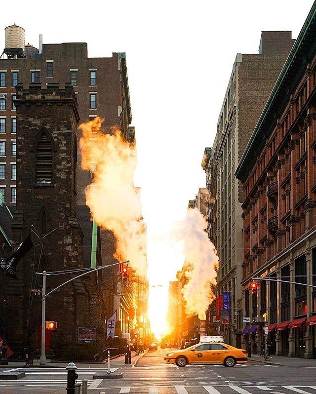Manhattanhendge manhattan soleil (2)