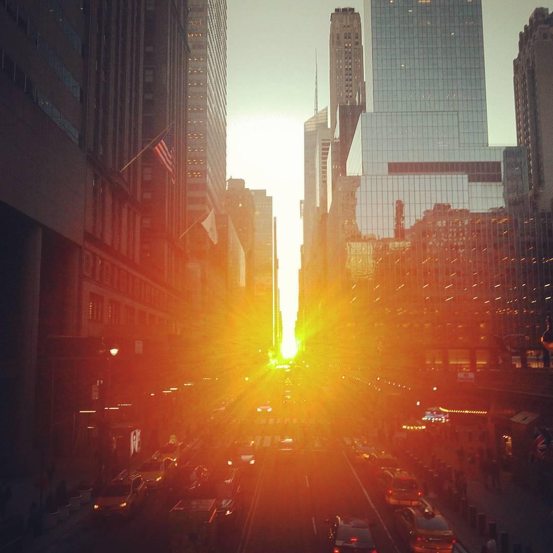 Manhattanhendge manhattan soleil (3)