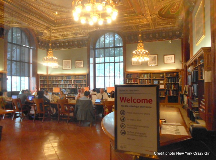 new york public library new york manhattan (7)