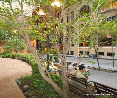 cedar street liberty plaza manhattan new york (3)