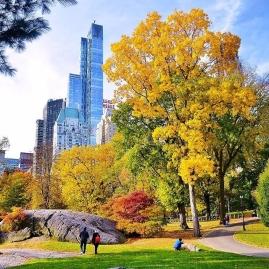 central park fall foliage (1)