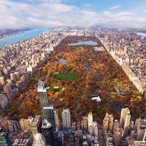 fall foliage central park new york
