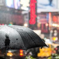 Quoi faire à New York les jours de pluie ?