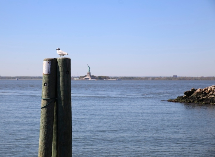 statue de la liberté red hook