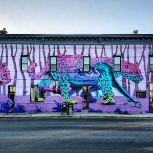 street artbushwick collective
