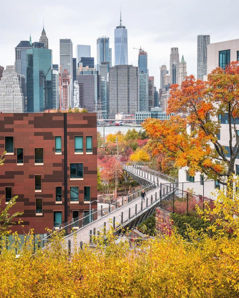 Squibb Park Bridge : un spot à Brooklyn totalement inconnu qui vaut vraiment le détour