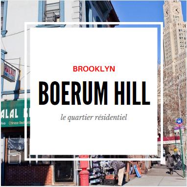 boerum hill brooklyn