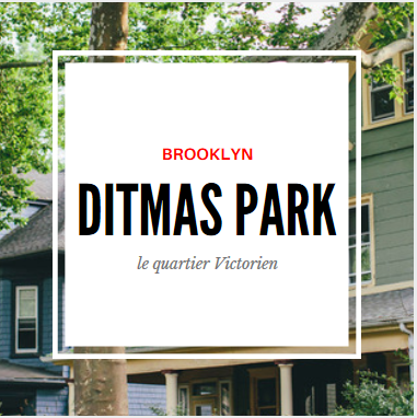 ditmas park brooklyn