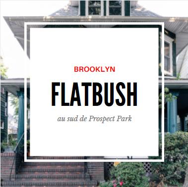 flatbush brooklyn.PNG